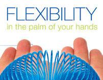 Flexability: Corporate Package Design