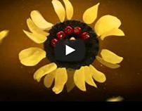 Chio Chips 100% ulei floarea soarelui