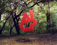 AICP Southwest 2009
