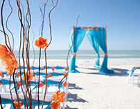 What Are The Best Beach Marriage Ideas?