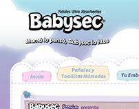 Babysec: Web Design & More