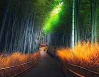 Beautiful Japan in Autumn