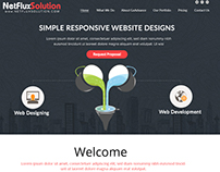 Net Flux Solutions Web Design Company