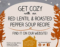 Marketing Materials for Livin' Spoonful