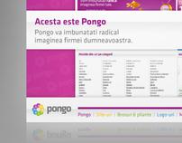 Pongo Flash Presentation