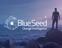 Blueseed Consulting