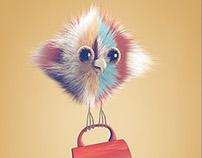 Birds Characters