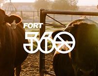 Fort 360 - Visual Identy