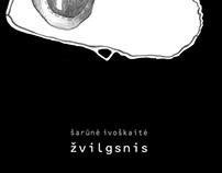 "Conceptual artist book - ""Žvilgsnis"""