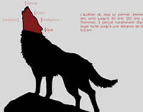Loup Android Application (WIP)