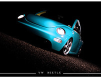 The Beetle Project