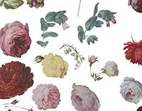 FREE floral cutout PSD