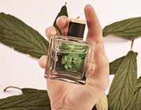 Whistles Fragrance
