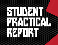 Practical Report