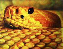 Airbrush Illustration - Snake