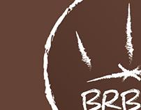 BERBEROS Rebranding Proposal