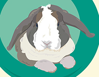 BROWNIE, bunny / illustration