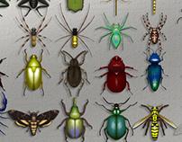 Bug Museum - IPad application design