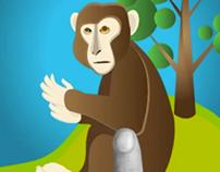 Rhesus Macaque (Educational App Design)