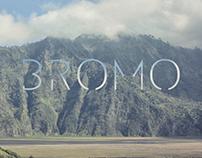 Visual Diary: Bromo ch. 1