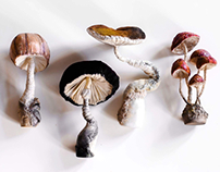 My amazing mushrooms 🍄 textilart sculptures