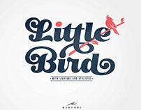 Little Bird Display Script Font