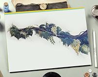 Grapes.Illustration.Painting