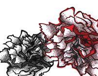 Arte Gráfica temática floral de peônias