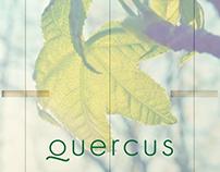 Comunicación Quercus