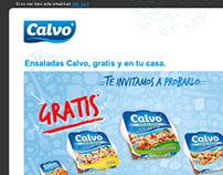 Newsletter Calvo: Te invitamos a probarlo.