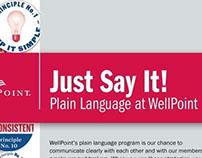 Plain language window display for WellPoint