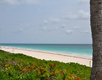Grand Bahama Island - Taino Beach Express