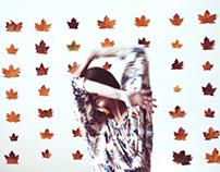 rendezvous d'automne