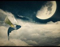 omar & his skyhook
