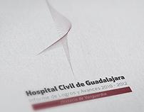 Informe de Logros y Avances -  Hospital Civil GDL