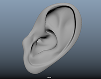 Ear Modelisation