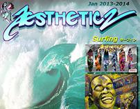 AESTHETICZ 2013-14 catalog