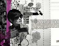 Punto Sur / Diseño web local indumentaria