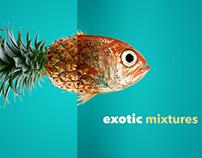 Zee Channel - foodz   rebrand   pitch