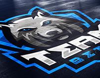 Team Beta Mascot Logo