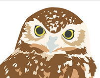 Parts of an Owl Interactive Sign