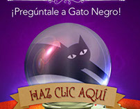 GatoNegro Predicción 2012