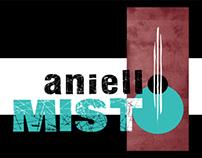 Aniello Misto  |  Musician & Singer
