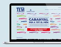 TEM: Website Design