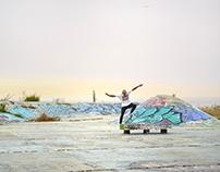 Gone Skateboarding