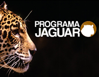 Web Design Programa Jaguar