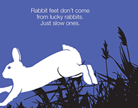 """""""Fast"""" direct mail for Lucky Rabbit Studio"""