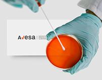 Avesa Brand Identity