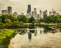 Chicago Nature