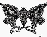 Pelvic butterfly